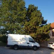 Mariage au Battoir à Chapelle-sur-Moudon le 24 août 2019 3
