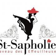 St-Sapholie, caveau des effeuilleuses, fête des vignerons, Mr. Atomick et Little Phoenix 3
